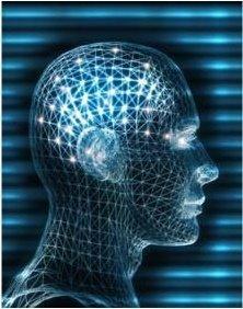 Desarrollo del potencial humano: una lectura sobre la incidencia de las funciones cognitivas y emocionales en el manejo de competencias para la vida .
